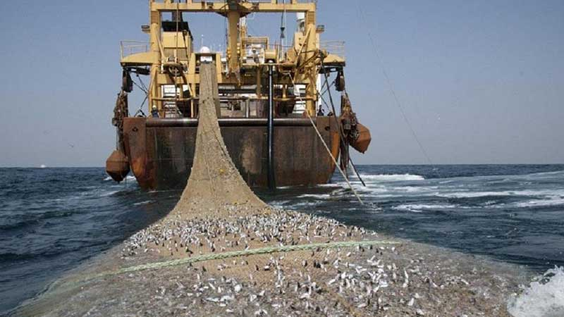 IUU-Fishing