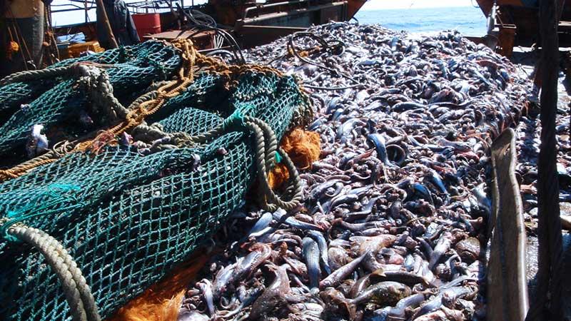 Benefits-fishing-pic