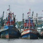 IUU-Fishing-news-site